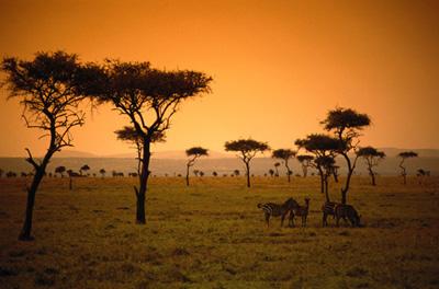 Photo Afrique