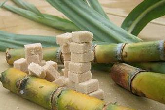 Bilan record du sucre ivoirien